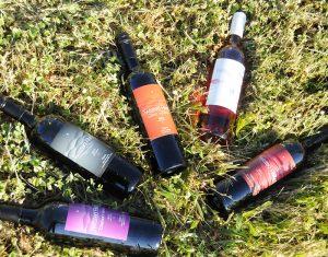 Wine-Club-2-300x235